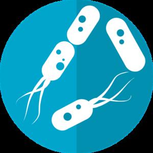 Probiotique: c'est quoi? à quoi servent les probiotiques ?