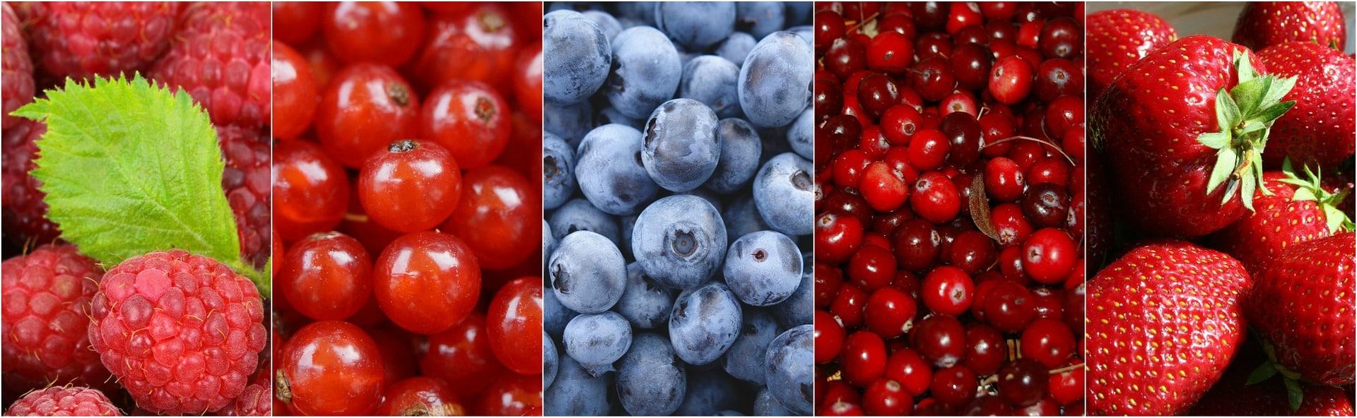 antioxydant naturel fruit baies antioxydantes