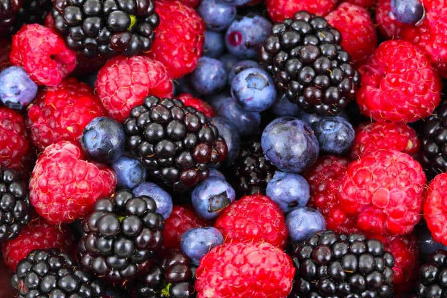 power berry antioxydant baies antioxydants naturel