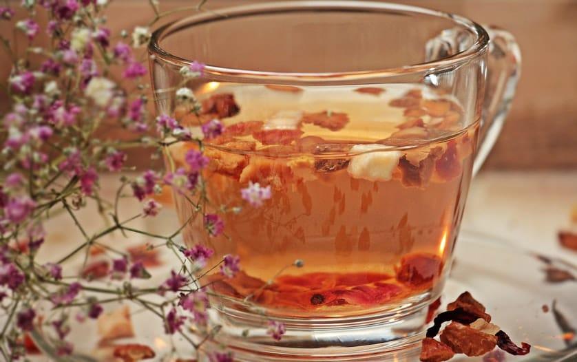 solution rhume maux hiver tisane plante